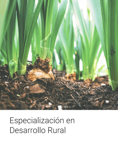 Especialización en Desarrollo Rural