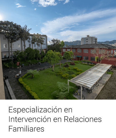 Especialización en Intervención en Relaciones Familiares