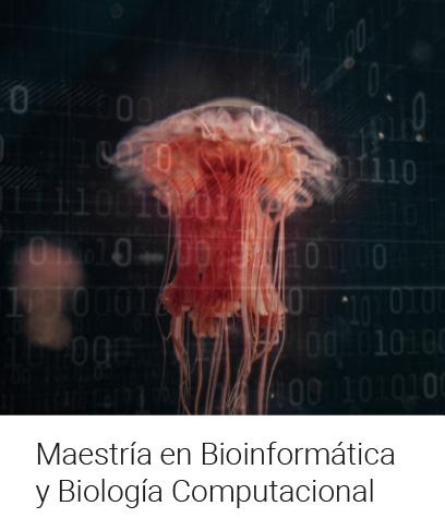 Maestría en Bioinformática